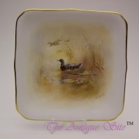 Royal Worcester Plate